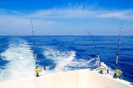 Bermuda activities bermuda events for Alabama deep sea fishing
