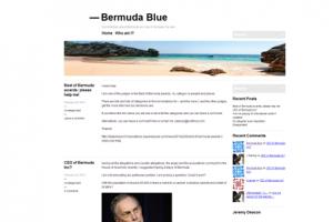 Jeremy Deacon Bermuda Blue