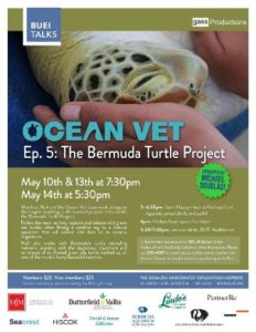 0513 Ocean Vet Bermuda Turtle Project