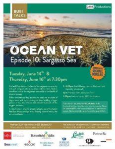 0614 Ocean Vet Sargasso Sea
