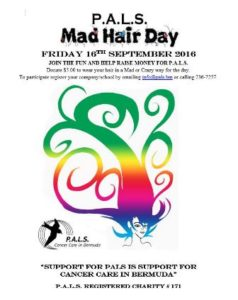 0916 PALS Mad Hair Day