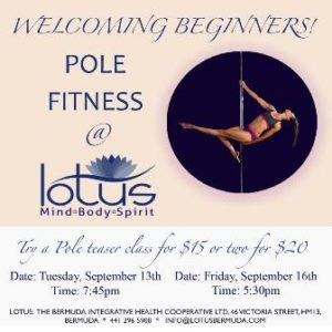 0913 Pole Fitness Teaser Class
