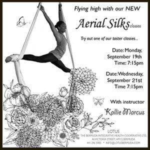 0919-aerial-silks-taster-class