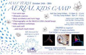1024-aerial-arts-and-yoga-kids-camp
