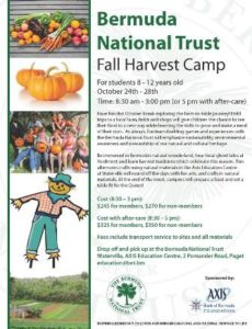 1024-bermuda-national-trust-fall-harvest-camp