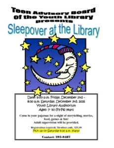 1202-sleepover-at-the-youth-library