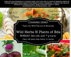 1211-taste-the-flavours-of-bermuda-cooking-demo-and-tasters